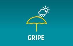 gripe_small